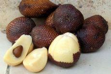 蛇皮果酵素蛇皮果酵素粉1公斤起订长期供应