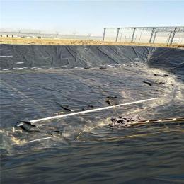 隧道用防水板土工膜急速发货