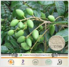 橄欖葉提取物--橄欖苦甙