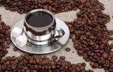 天津博雋公司咖啡行業領先