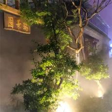 成都景美佳泸州市楼顶园林景观造雾项目