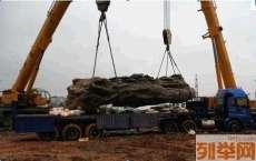 北京海淀区吊装搬运