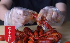 龙虾鸭脖熟食一次性手套生产厂家
