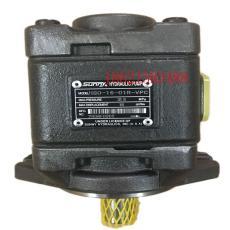 上海HG2-100-01R-VPC伺服泵剪折彎機齒輪泵