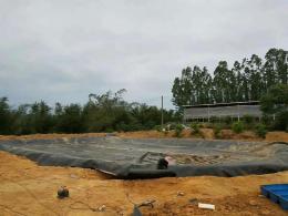 荊門化工污水池專用防滲膜