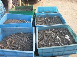 灌口无铅锡条收购灌口千住M705锡回收