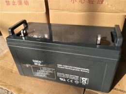 赛达铅酸蓄电池6FM-120 12V120AH后备电源