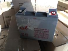 力源阀控密封式铅酸蓄电池6-FM-17 12V17AH