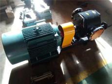 保溫齒輪泵化工保溫泵無泄漏安全可靠