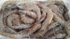 丹麦北极甜虾进口清关流程/青岛清关代理