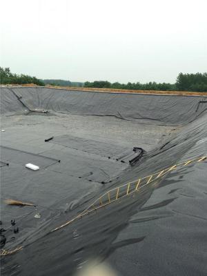 哪里生产养猪场粪池加盖用的黑胶膜安阳洛阳