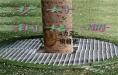 河北鋼格板 樹池蓋板規格尺寸任由你來定
