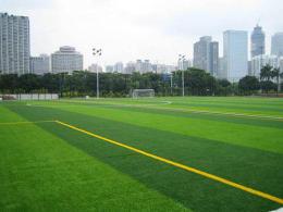 供应北京哪里有卖人造草坪的假草坪出售