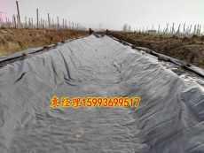 魚塘0.5mm厚防水黑塑料布商丘濟源生產廠家