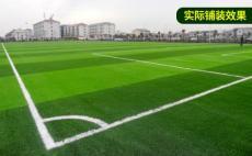 北京绿化仿真草坪厂家假草坪价格
