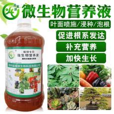 益富源催芽生根液促进葫芦发芽提高发芽率