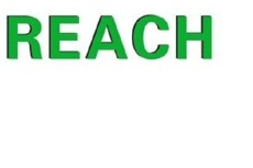 Reach檢測流程 Reach測試要求 Reach檢測