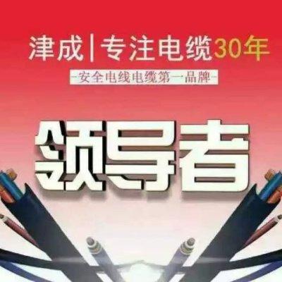 陕西津成电线津成电线电缆西安直销处