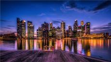 新加坡極致拍賣公司合作流程