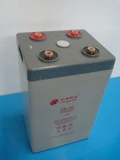 长海斯达免维护蓄电池6-FM24 12V24AH后备电