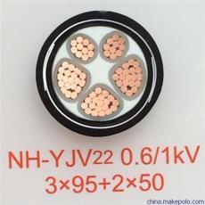 ZR-DJYPVP-5*2*1.5電纜