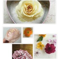 鲜花干花干燥剂硅胶粉植物标本长期保存制作
