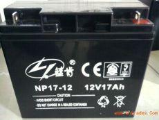 蓝肯免维护电池NP24-12 12V24AH参数规格