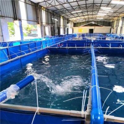 新型养虾帆布水箱-大型养殖对虾帆布水池