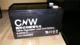 储霸蓄电池6-GFM-65 12V65AHUPS专用