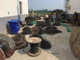 胶州市电缆回收-通知胶州市市场信息价格