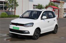DL 350款電動四輪車新能源電動代步汽車