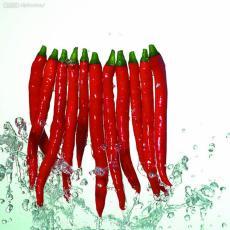 大量供應食品級增味劑辣椒精