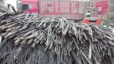日喀则收购电缆电缆收购价格