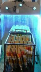 果蔬园艺花卉表面杀菌150W紫外线灯管批发