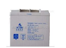 金塔蓄電池LC-R1224直流屏蓄電池LC系列