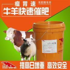 肉牛快速催肥  怎么提高肉牛饲料利用率
