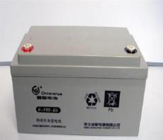 鑫寶蓄電池6-FM-65 12V65AH風力發電專用