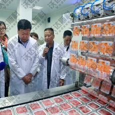 羊血豆腐加工设备 盒装猪血生产线