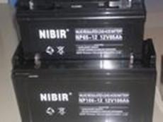 蓝瑞蓄电池NP12-100AH 12V100AH报价参数