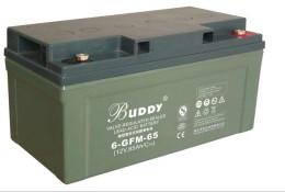 BUDDY阀控式铅酸蓄电池6-FM-65 12V65AH电源