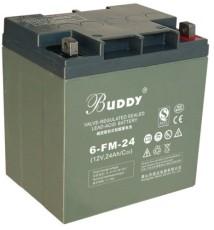 BUDDY铅酸蓄电池6-GFM-24 12V24AH全国报价