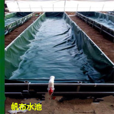无支架鱼虾帆布水池 无气味养殖鱼池加工