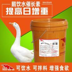 鵝吃什么長得快  喝水也能長肉你信嗎