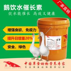 鵝催肥配方這里有  養鵝人必知的鵝養殖技術