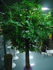 北京订做大型假树北京仿真树厂