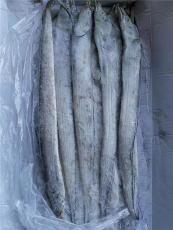 带鱼进口清关代理选择青岛海鲜进口清关公司