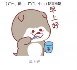 广州市专业防雷公司