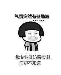佛山广州防雷检测