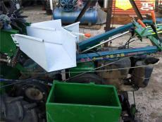 最新方法种植的长粒香大米