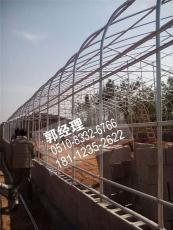 忻州香菇水果大棚管采购报价量大从优